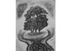 bomen-jpg